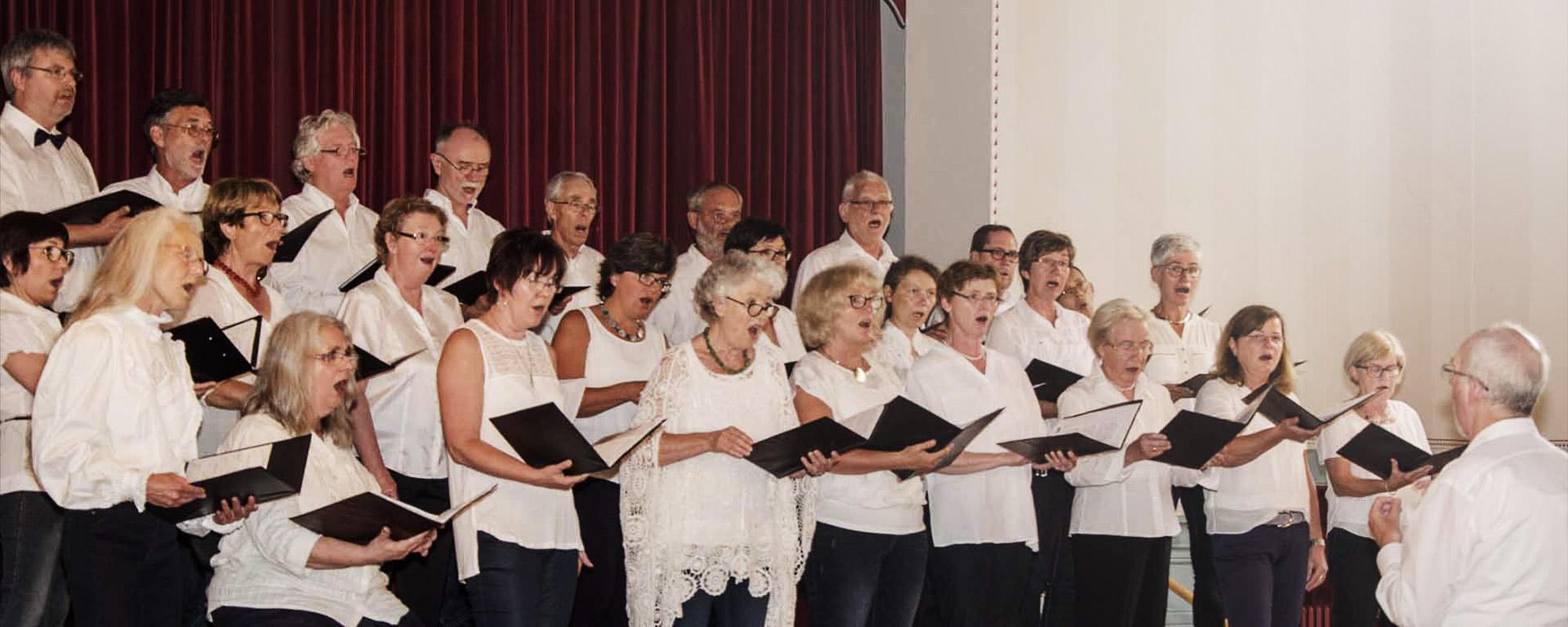 Capella Vox Humana Sänger Konzert